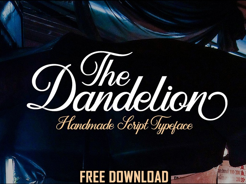 Download Dandelion - FREE DOWNLOAD by Fonts Collection on Dribbble