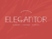 Elegantor | Vintage Display Font