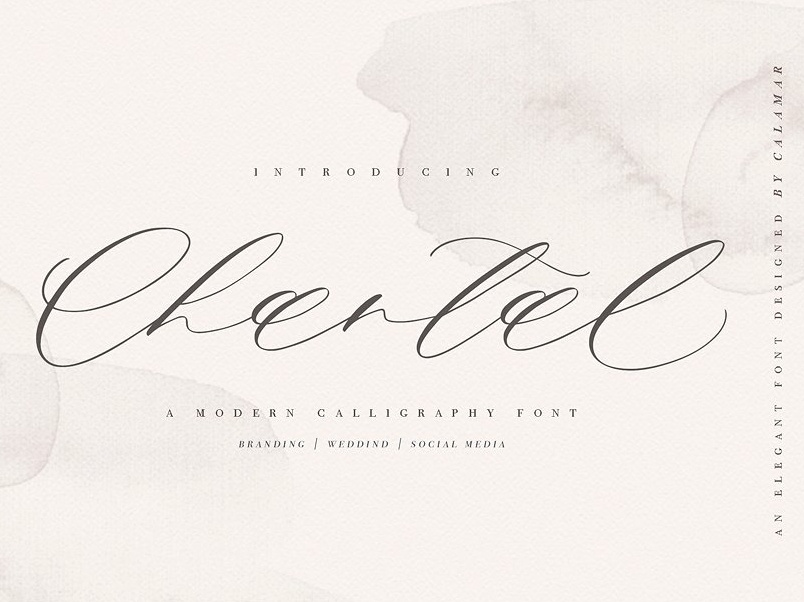 Chantal Script handwriting feminine wedding stylish signature handwritten fonts collection script font elegant typeface lettering typography logo branding font modern calligraphy modern calligraphy modern calligraphy font script