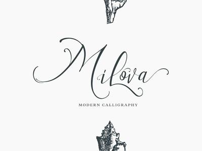 Milova | Modern Calligraphy font