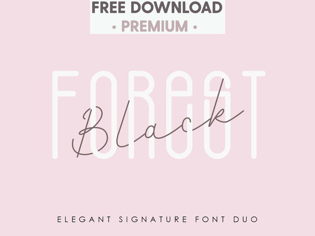 Free Download - Black Forest l Elegant Font Duo by Fonts Collection
