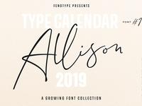 Type Calendar 2019 | Font Bundle