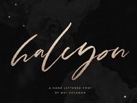 Halcyon Brush Lettered Font