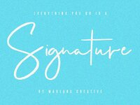 Nyquist Script - Free Sans by Fonts Collection on Dribbble