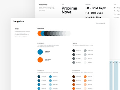 SnappCar Styleguide typograhy colors proxima nova online button form identity branding ui style guide styleguide