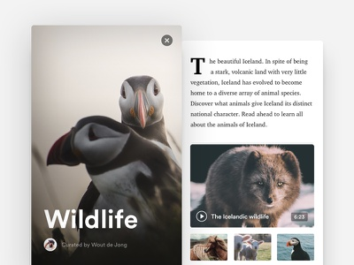 Travel / Nomad App Concept animal iceland minimal clean editorial photography ios interface app travel