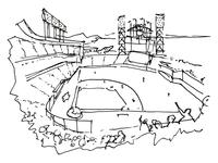 Chuck Taylor SF Sketch