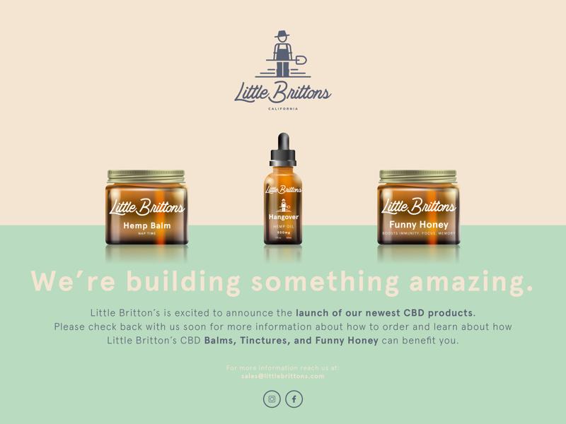 Little Brittons Landing illustration little brittons design branding packaging art web design