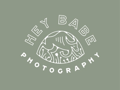 Hey Babe Photography 1 minnesota babe sage nature adventure hiking flowers floral lockup emblem seal animal ox logo branding photography
