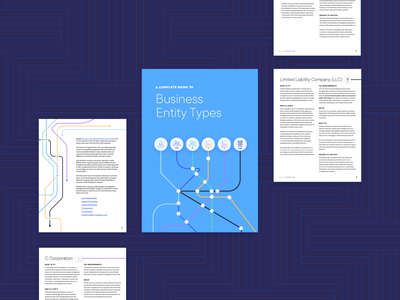 Business Entity Types ebook design ebook cover layout finance business ebook