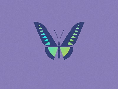 Emerge geometric birdwing logo butterfly