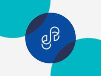 Double S Logo