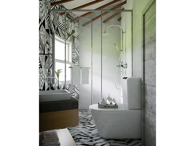 Luxurious Resort Bathroom Interior, South Africa
