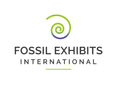 Fossil Exhibits International - Logo Design Project institutional logo b2b business fossil ammonite graphic graphic design logo design logo design