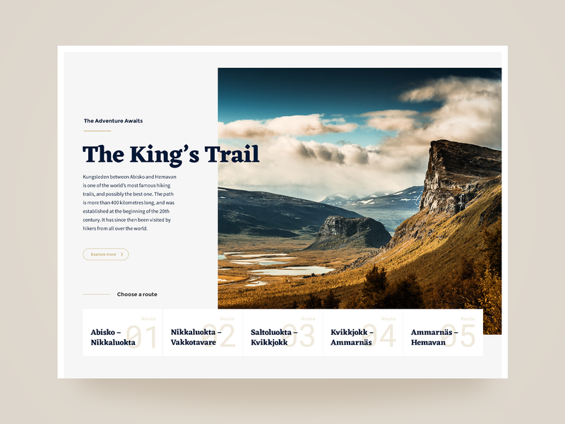 The Trail webdesign concept web design design
