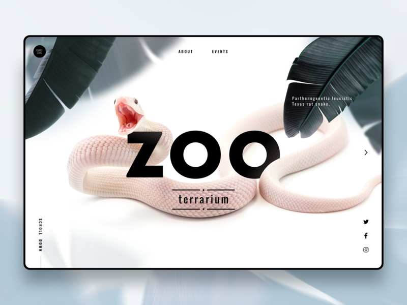 Zoo Page Concept website web design design landing homepage interface terrarium zoo leaf plant logo portfolio typogaphy minimalistic page web ui snake minimal clean