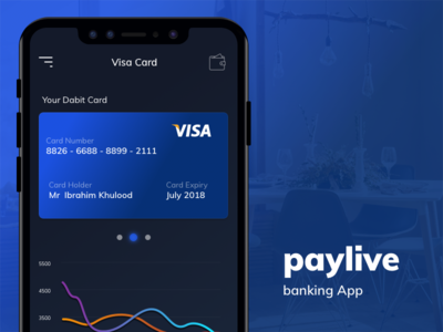 Paylive Banking App money transfer ux ui iphone iosapp ios online bank design
