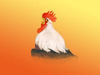 A big cock