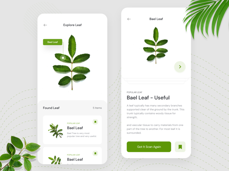 Leaf Scanner App Concept - AI simple purchases idea online shop mobile ios instagram xd figma design e-commerce clean modern minimalist popular leaf bot leaf app