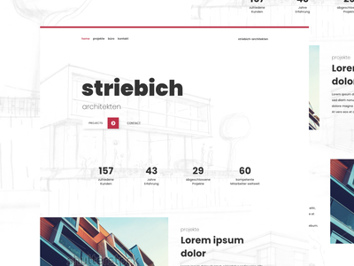 "Redesign Concept for ""Striebich"""
