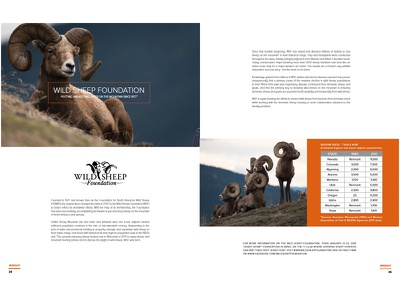 SITKA Gear Insight Spread WSF product clean simple brand book magazine sitka gear hunting