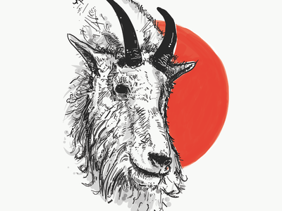 Mountain Goat digital mountain goat illustration mountain goat