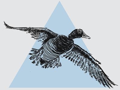 Duck Illustration triangle sketch mallard illustration duck