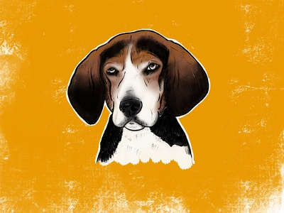 Hound Portrait digital drawing ipad pro hound dog illustration