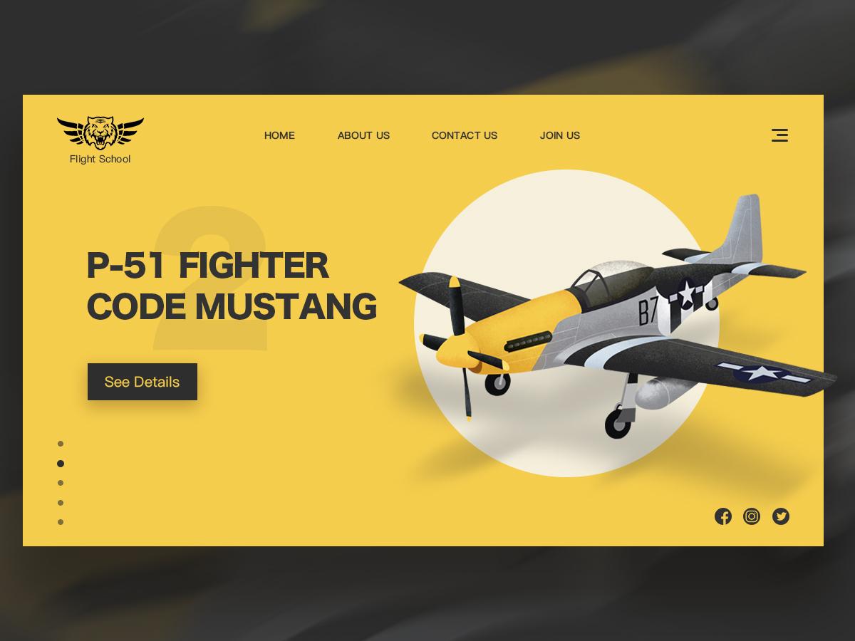 Legendary fighter P-51 web icon logo 图标 design ai ps 设计 ui