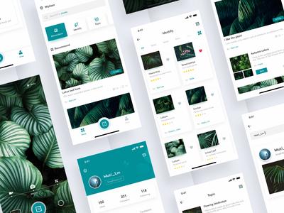 Plant Encyclopedia APP Design