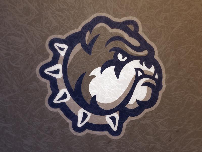Bully uniform sports athletics logo mascot dog bulldog