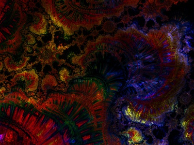 Deep Underwater Rainbow Coral