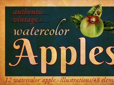 Authentic Vintage Watercolor Apples Volume 1