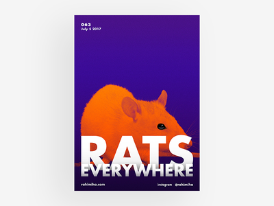 Day 063 typography type rat mouse futura orange bold poster graphic design daily