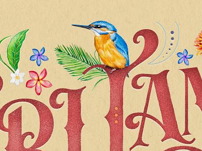 Sri Lanka – Home of the Kingfisher vintage design typography brand designer serif lettering serif type custom type handmade art homage lettering artist illustrator kingfisher sri lanka hand drawn illustration handlettering lettering