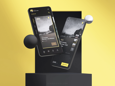 NATIONAL GEOGRAPHIC branding ux yellow black national geographic design app flat icon ui