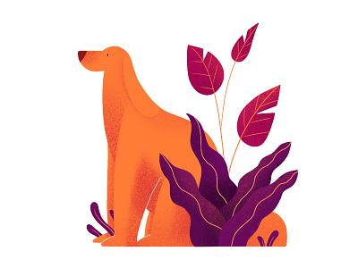 Dogg logo draw dog purple orange graphic flat ipad ipad pro illustration