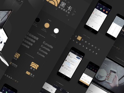 HEIKA typography gold black user experience product financial branding vis logo illustration graphic ux web app flat icon ui