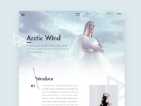 Arctic wind homepage