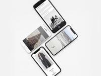 Salanida - Website