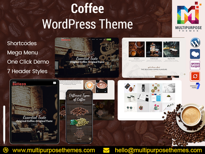 Multi-Purpose Responsive WordPress Themes