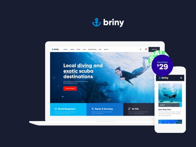 Briny | Scuba Diving & Water Sports WordPress Theme wordpress themes webdesign web design wordpress wordpress theme