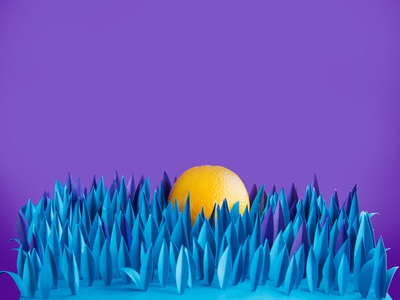04 graphic design photography paper craft art direction
