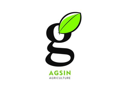 Agsin Brand Identity