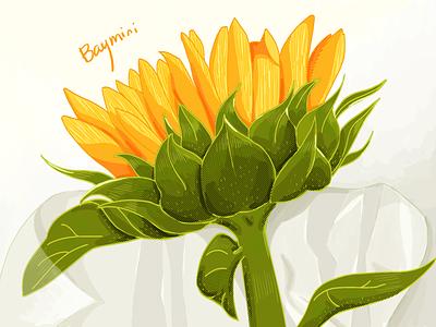 Sunflower flower illustration design