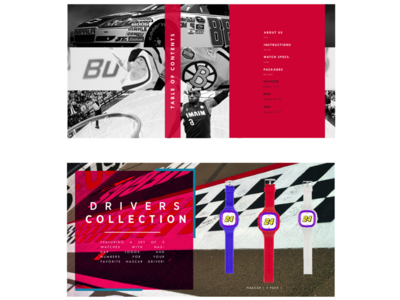 Switchups Catalogue Pages  |. NASCAR rebrand graphic design fashion ad design web ads web design banner ad nascar