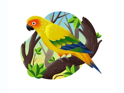 Parrot texture yellow inspiration nature drawing adobe sketch design personal project parrot bird illustration
