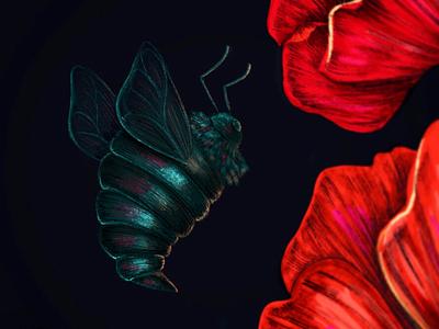 Bug. procreate digital illustration color digital
