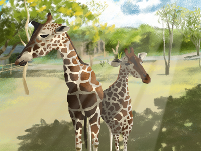 Osaka Zoo artph art tropical zoo november osaka japan giraffe