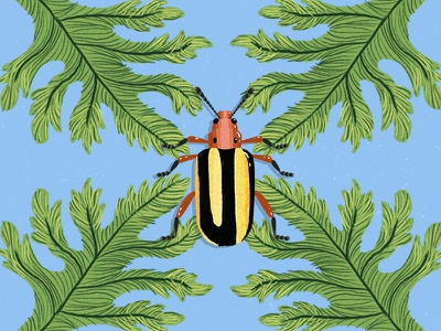 Tiny Creatures of Paradise (2/3) digitalpaint color tropical digital illustration design beetle insects artph art
